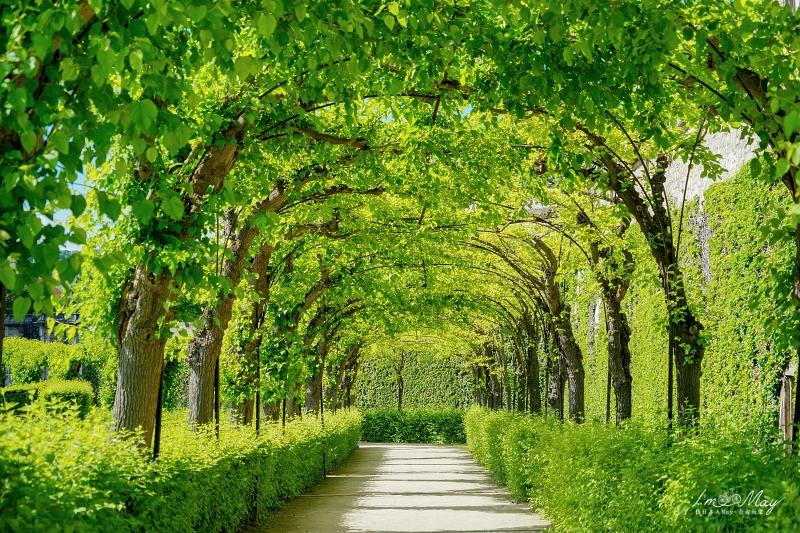 德國、烏茲堡 | 羅曼蒂克大道第一站烏茲堡景點散步地圖 (Wurzburg) | 烏茲堡景點總整理、德國符茲堡 @偽日本人May.食遊玩樂