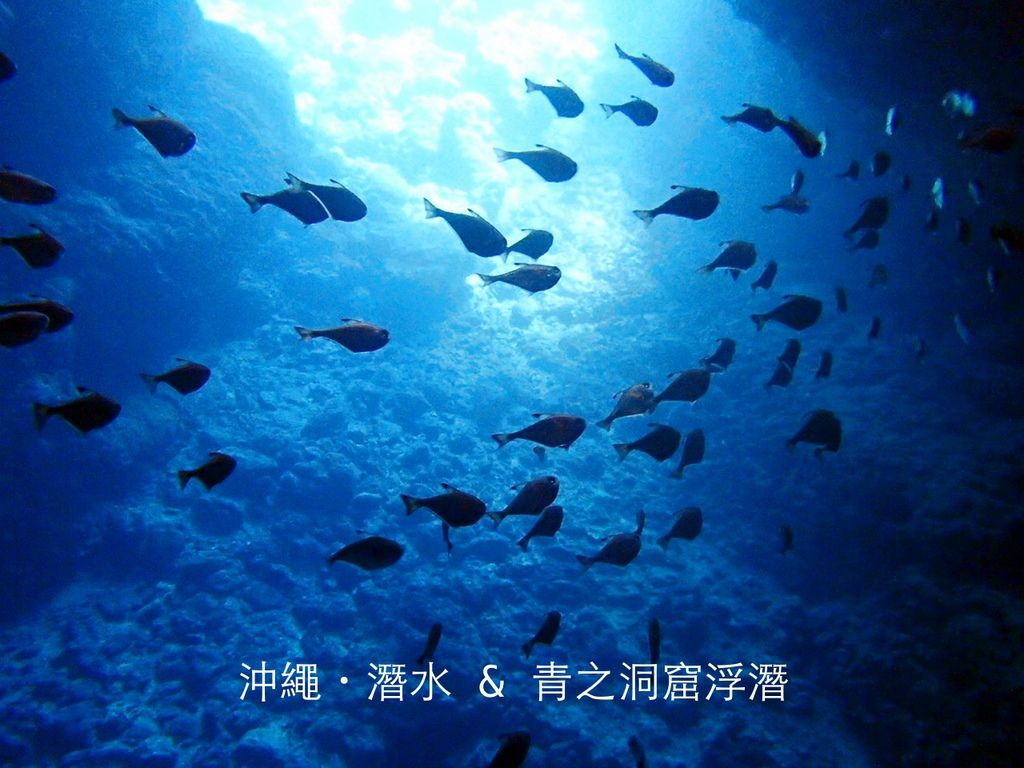 [沖繩] 青之洞窟潛水體驗。 『 diving shop NATURAL BLUE』專業教學又有免費體驗照片,真的太超值啦 @偽日本人May.食遊玩樂