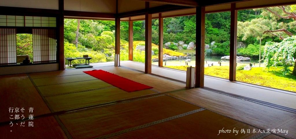 [京都] 大原 寶泉院。凝視雪白世界裡的庭園美景,與七百年樹齡的五葉松對望 (大原/血天井) @偽日本人May.食遊玩樂