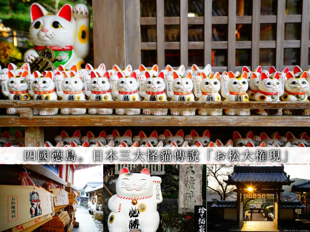 德島深度旅行 | お松大権現。日本三大怪貓傳說 x 一萬隻貓咪住在的神社 (喵星人神社/貓奴必訪/附交通方式) @偽日本人May.食遊玩樂
