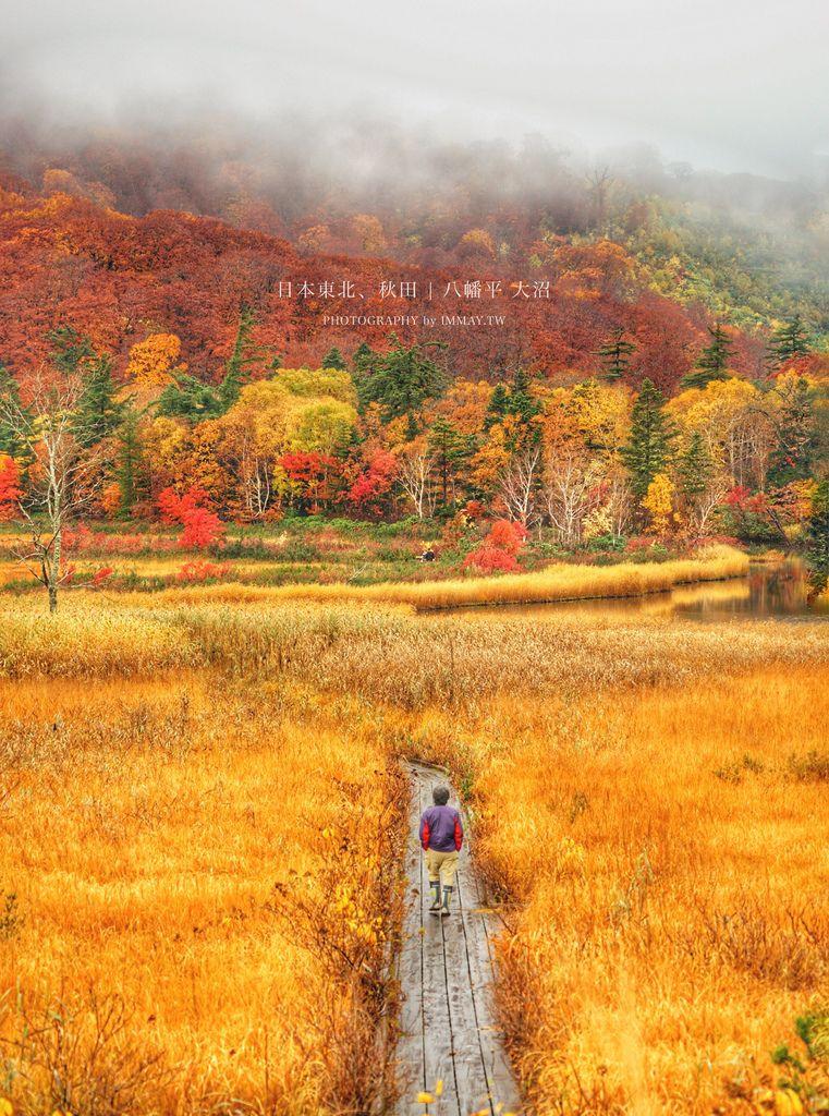 日本鐵道旅行 | 滿滿彩繪富士山的童趣電車「 富士山特急號 ( フジサン特急 ) 」| 實際搭乘記錄 ( 大月-河口湖 )、景觀展望車廂、巧遇湯瑪士樂園號列車 @偽日本人May.食遊玩樂