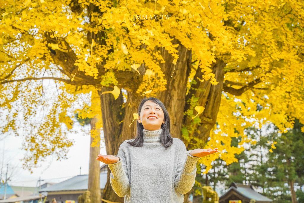 日本絕景攝影 | 森林裡的夢幻祕境、經歷數十年累積的湧泉瀑布群「元滝伏流水」| 秋田攝影景點、鳥海山地質公園、象潟地區自然景觀、拍攝建議、交通方式詳解 @偽日本人May.食遊玩樂